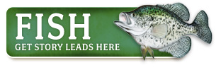 fish_home