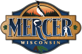 mercer-wisconsin-logo